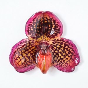 Real orchid flower jewelry wholesale Bellatulum necklace in pink color