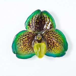 Real orchid flower jewelry wholesale Bellatulum necklace in green color