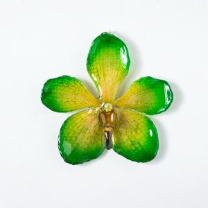 Real flower jewelry wholesale Mokara necklace in green color