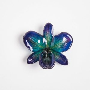 Real flower jewelry Nobile pendant in blue color