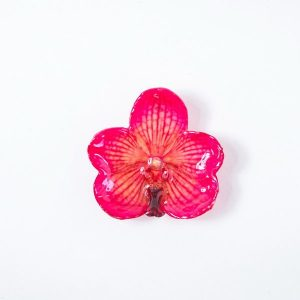 Real orchid flower jewelry wholesale Vanda pendant in pink color