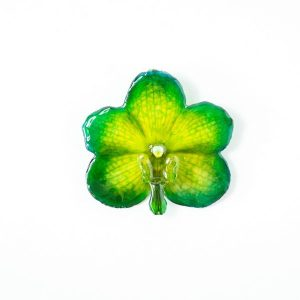 Real orchid flower jewelry wholesale Vanda pendant in green color