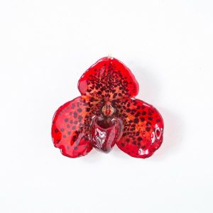 Real flower jewelry small Bellatulum pendant in red color